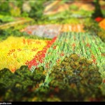 Vincent van Gogh - en mode Tilt-shift - field-with-popp