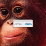 WWF_-_Save_dont_save