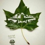 Plant for the planet - Every Leaf traps Co2 2