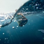 Surf Rider Foundation - In the sea, there is no such thing as a little bit of rubbish - help us keep the ocean clean 3