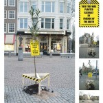 This tree was planted illegaly by friends of the earth