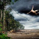WWF - 15 km of rain forest diseppears every minute