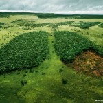 WWF - Before it&#039;s too late